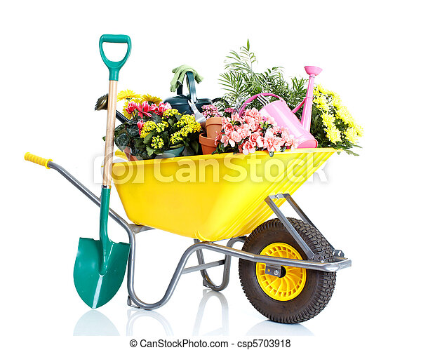 Gardening - csp5703918