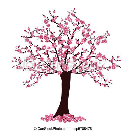 cherry tree - csp5708478