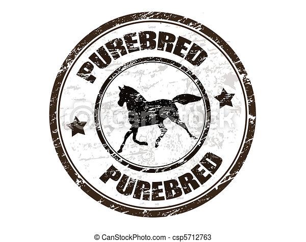 Purebred horse stamp - csp5712763