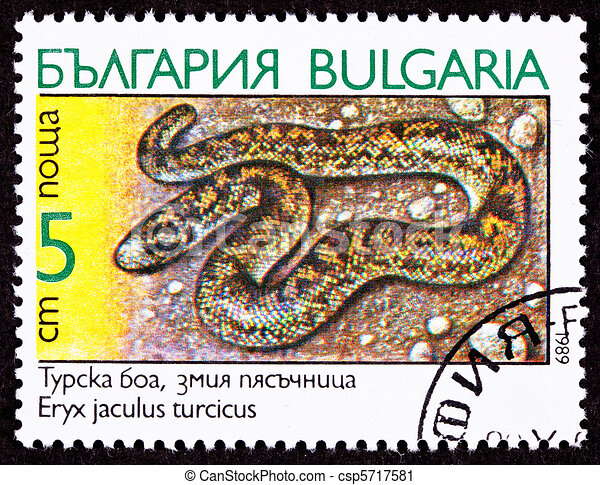 Bulgarian Postage Stamp Javelin Sand Boa Constrictor Snake, Eryx - csp5717581