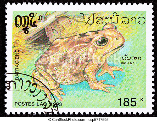 Canceled Laotian Postage Stamp Marine Cane Toad Bufo Marinus - csp5717595