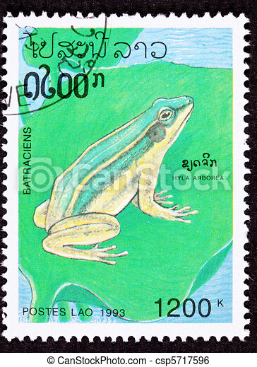 Canceled Laotian Postage Stamp Sitting European Tree Frog Hyla A - csp5717596