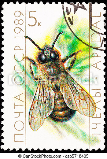 Canceled Soviet Russia Postage Stamp European Honey Bee Drone - csp5718405