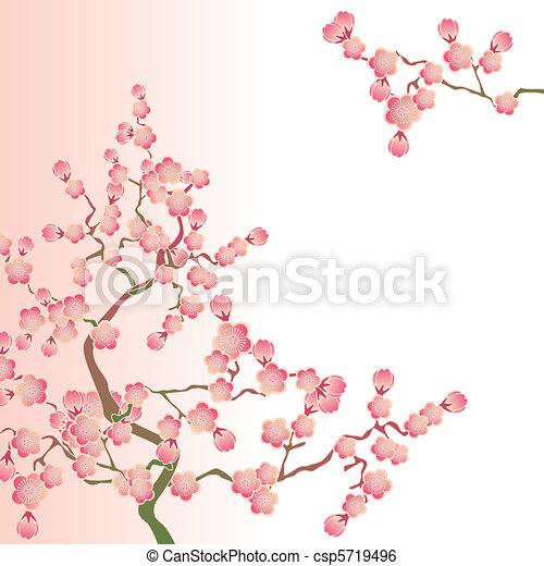 Cherry blossoms - csp5719496