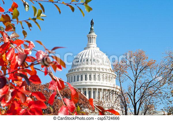 predios,  U,  s,  Washington,  DC, Outono,  capital, folhas, vermelho - csp5724666