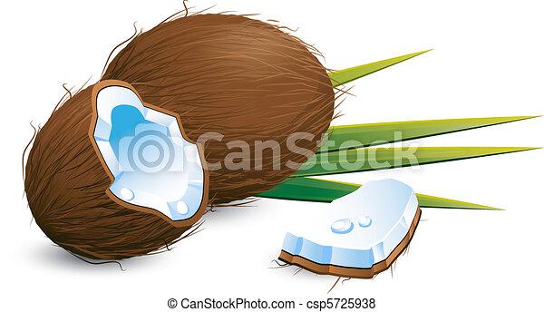 Coconuts over white - csp5725938