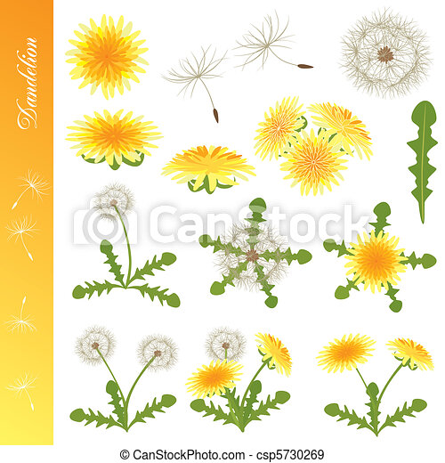 Dandelion Icons Set - csp5730269