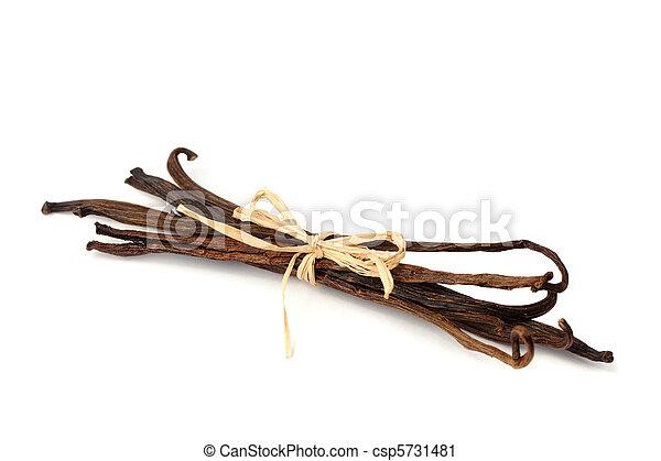 Vanilla beans bundle - csp5731481
