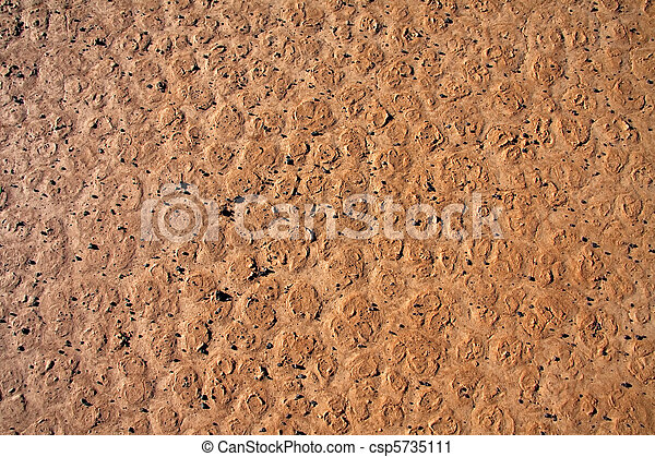 dry cracked dirt surface - csp5735111