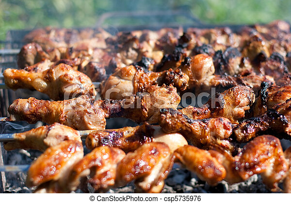 barbecue or fried chicken and pork meat - csp5735976