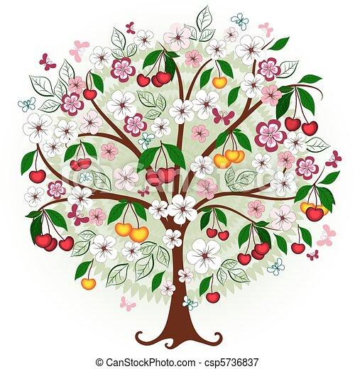 Decorative cherry tree  - csp5736837