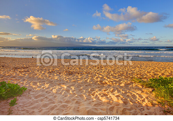 Tropical gold sand beach. Oneloa Beach, Maui, Hawaii - csp5741734
