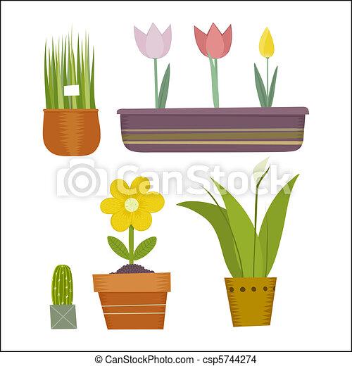 flowers in pots - csp5744274