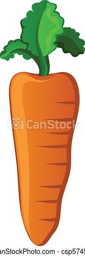 Carrot - csp5745160