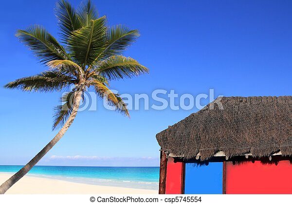 Caribbean coconut palm tree and red hut cabin - csp5745554