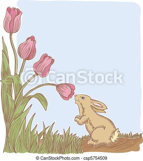 Spring Has Sprung - csp5754509