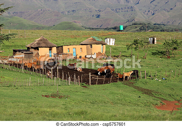 Rural huts and cattle - csp5757601