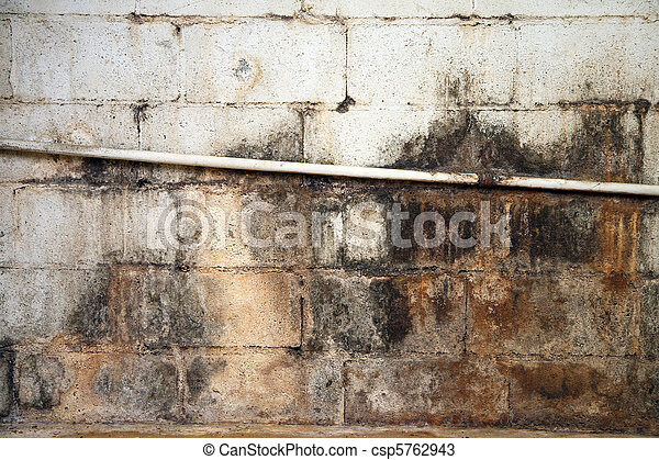 Severe water damage on a cinderblock wall in a neglected basement. It\'s covered in dirt, cracks, mold and mildew.