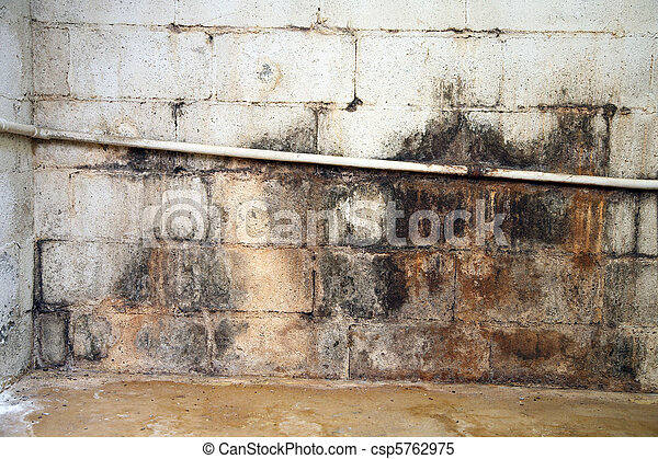 Water damaged and moldy basement wall - csp5762975