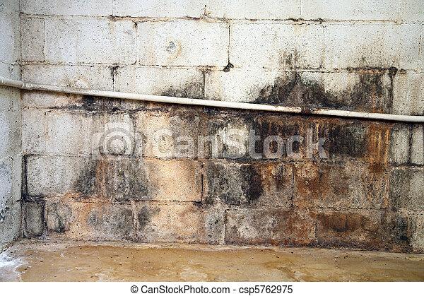 Water damaged and moldy basement wall - csp5762975