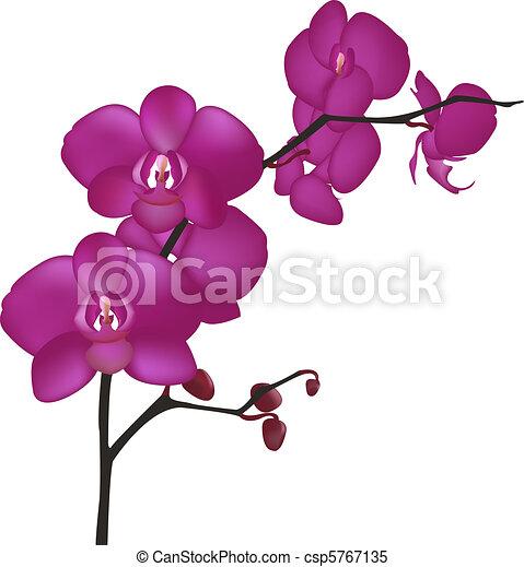 Can Stock Photo Raya Free Vector Art Downloads