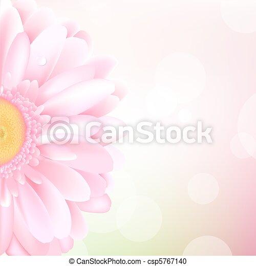 Pink Gerbera - csp5767140