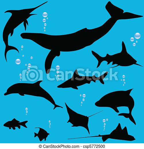 Sea fish silhouettes - csp5772500