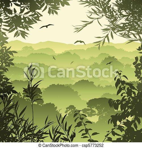 Forest Landscape - csp5773252