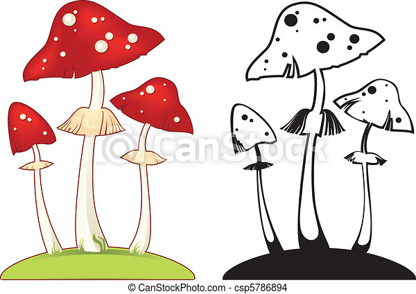Fly Agaric Drawing Fly Agaric Vector