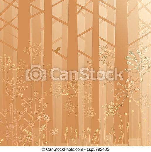 Undergrowth in the mist - csp5792435