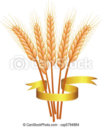 wheat ears and golden ribbon - csp5794884