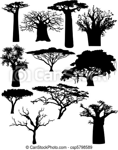 various African trees and bushes - csp5798589
