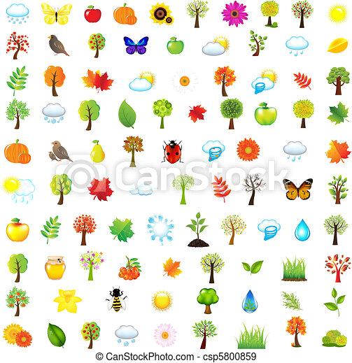 Set Of Natural Elements - csp5800859