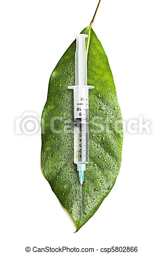 syringe on a leaf - csp5802866