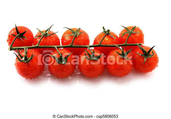 Tomatoes - csp5806053