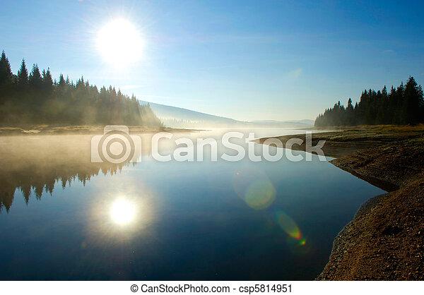 foresta, profondo, lago - csp5814951