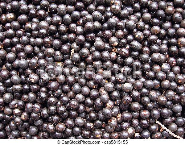 Acai, fruta, colheita - csp5815155