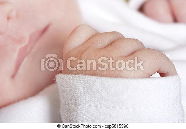 close up of newborn babies hand - csp5815390