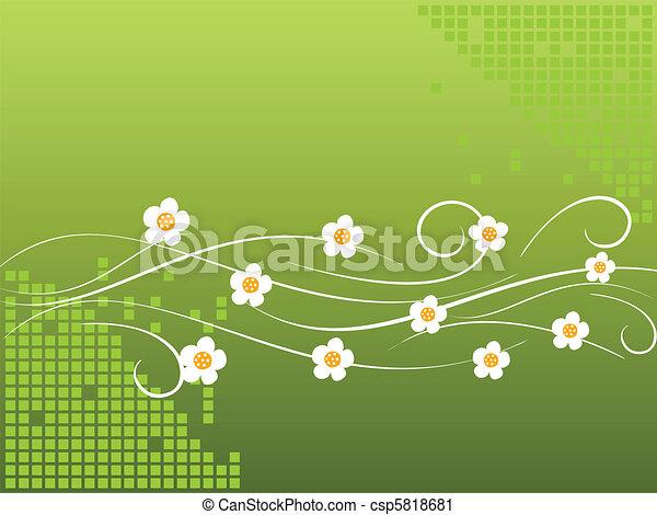 White daisies - csp5818681