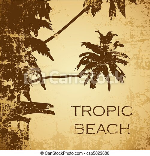 beach - csp5823680