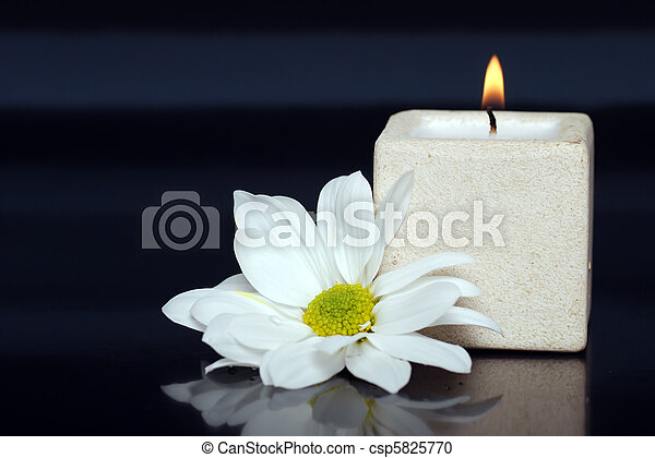 lite candle with a daisy - csp5825770