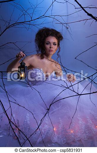 Brides dream - csp5831931