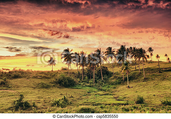 Rural landscape - csp5835550