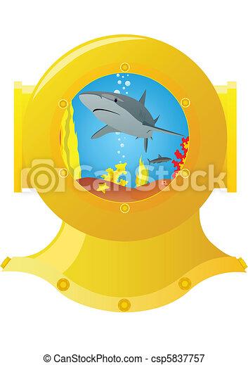 Marine predator - csp5837757