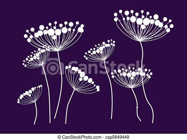 Wildflowers, Queen Anne's Lace - csp5849449