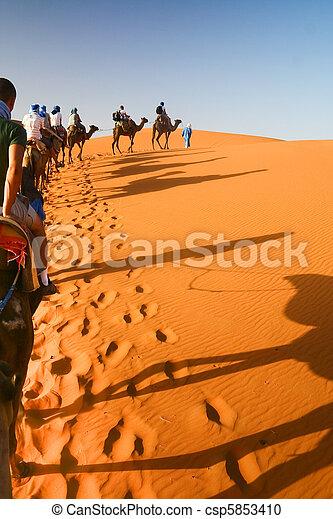 Camel caravan going through the sand dunes in the Sahara Deser - csp5853410