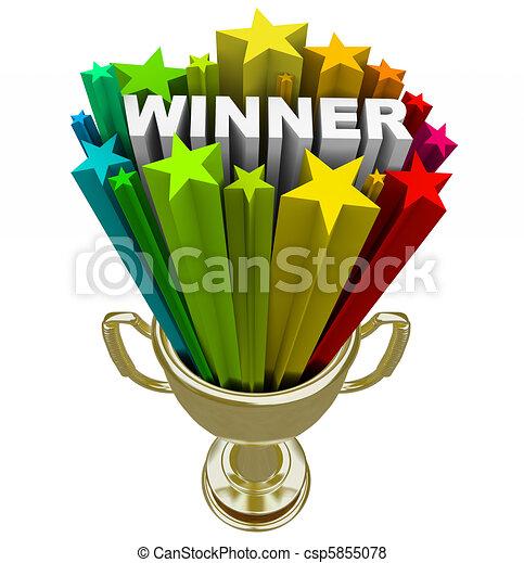 Winner Trophy - Burst of Stars Fireworks  - csp5855078
