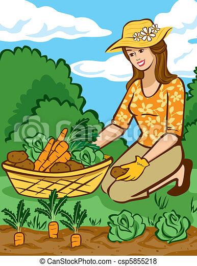 Growing Vegetables in a Home Garden - csp5855218