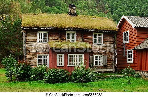Banco de fotos de a telhado antigas casa coberto for Casas en noruega
