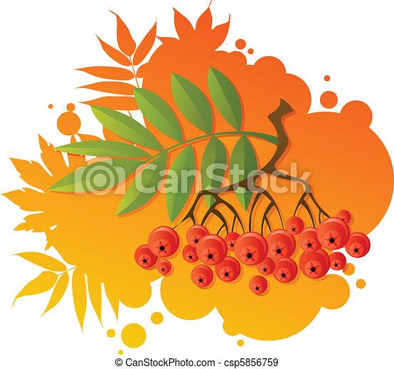 Red rowan - csp5856759